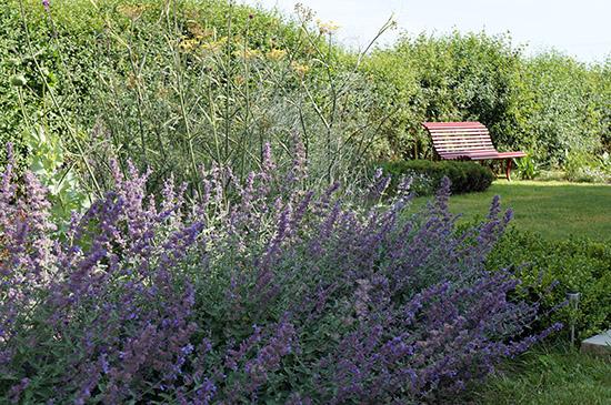 Sussex seaside garden capability garden design for Landscape design sussex