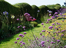 Sussex Seaside Garden